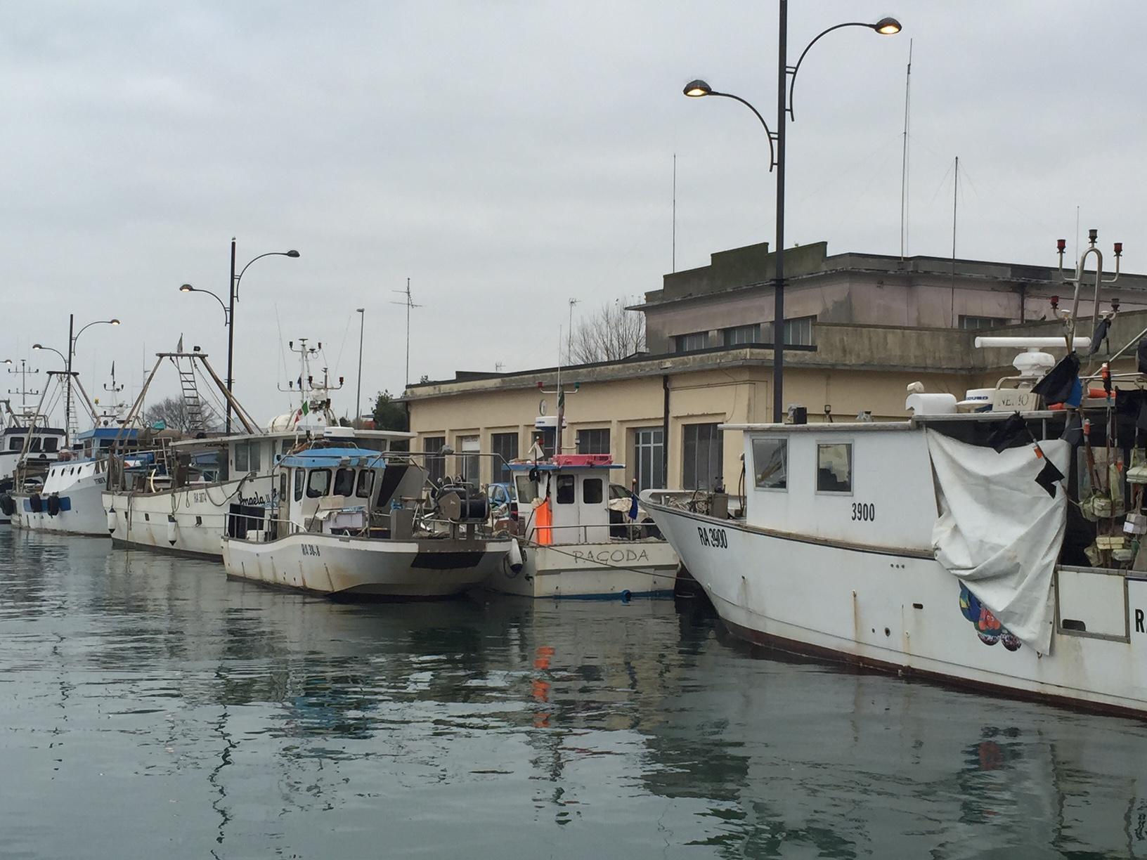 Barche da pesca e mercato del pesce a Marina di Ravenna