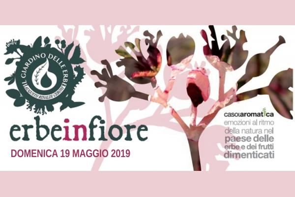 Erbe in fiore - Casola Valsenio