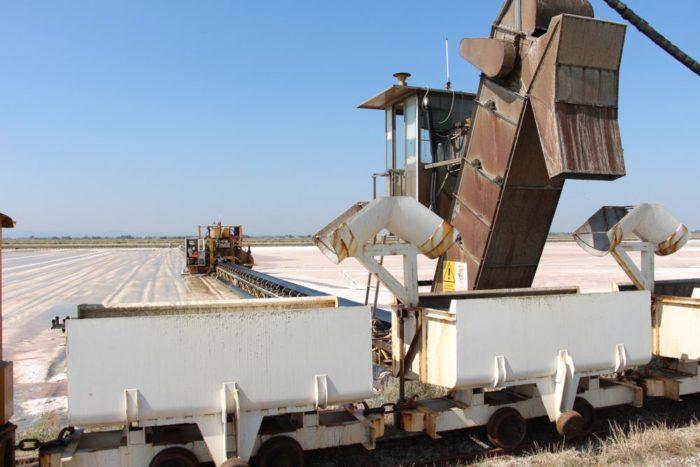 Processo di raccolta del sale
