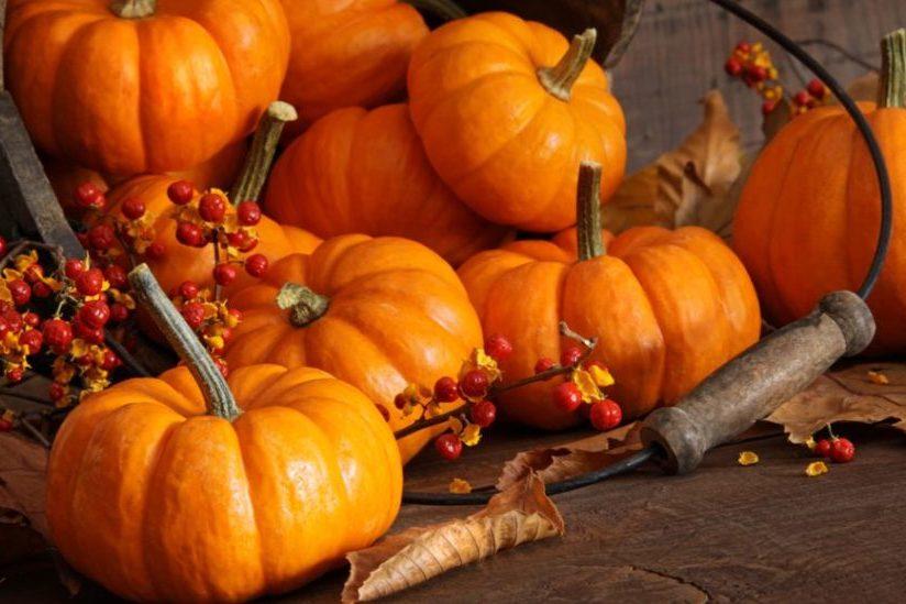 Immagine Zucca Di Halloween 94.Le Proprieta Nutrizionali Della Zucca E Dell Olio Di Semi Di Zucca