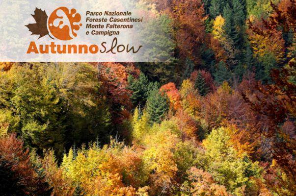 Autunno Slow - Parco delle Foreste Casentinesi