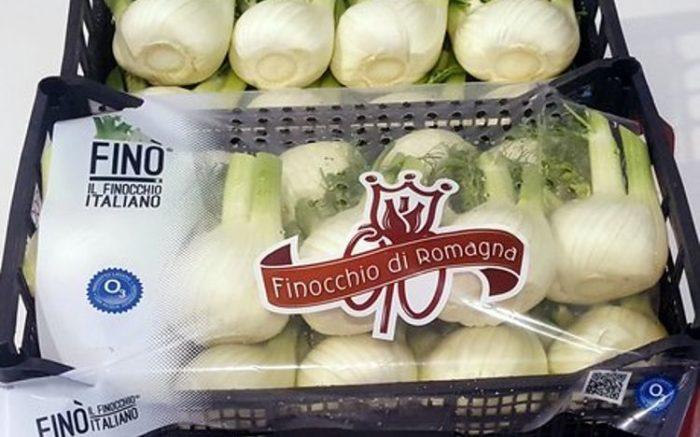 Finocchio di Romagna