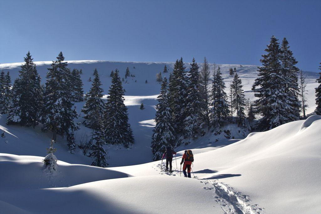 Ciaspolate sulla neve