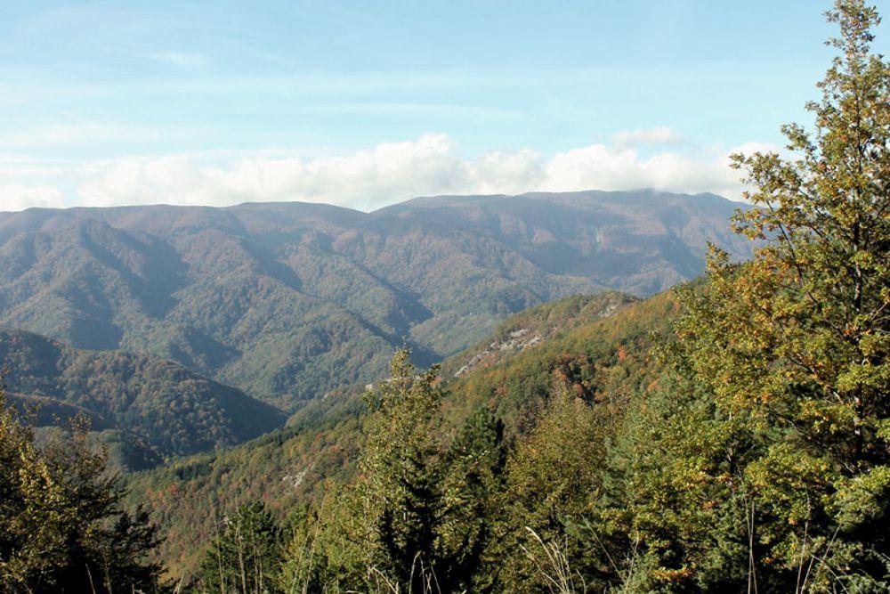 Natura Magica - Escursioni