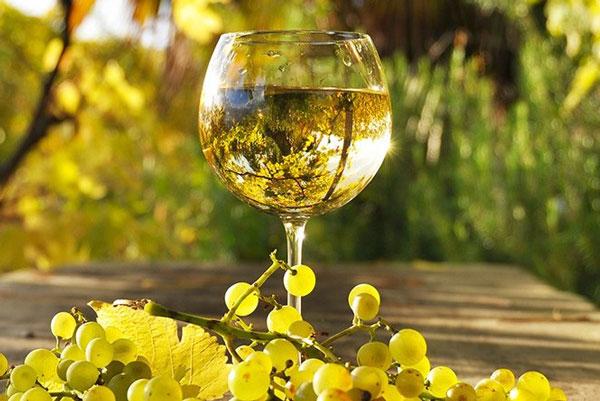 Bicchiere di Albana