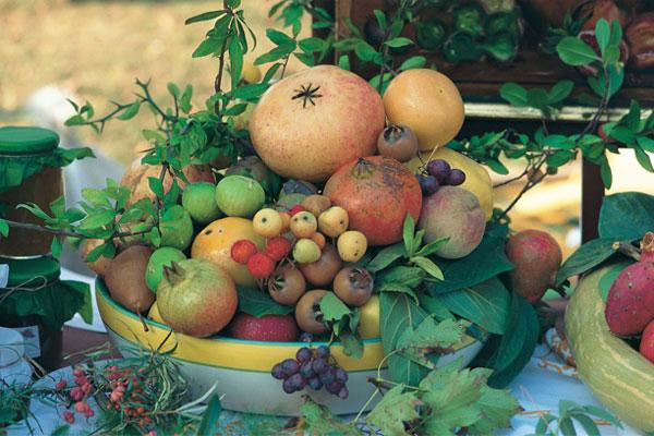 Frutti dimenticati - Pennabilli