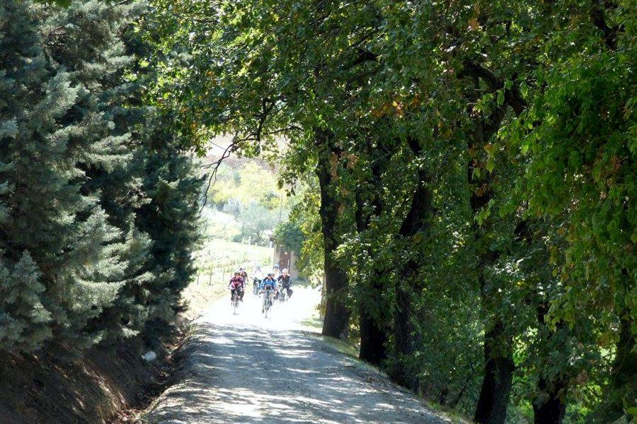 Gita in E-Bike sulle colline romagnole
