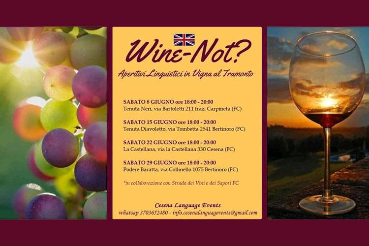 Wine Not nelle colline del Cesenate